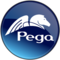 Logo for Pega CRM Solution